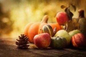 thanksgivinggourds